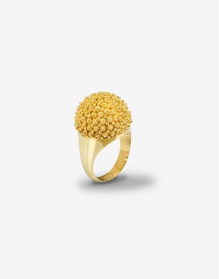 Fedele cupolina ring